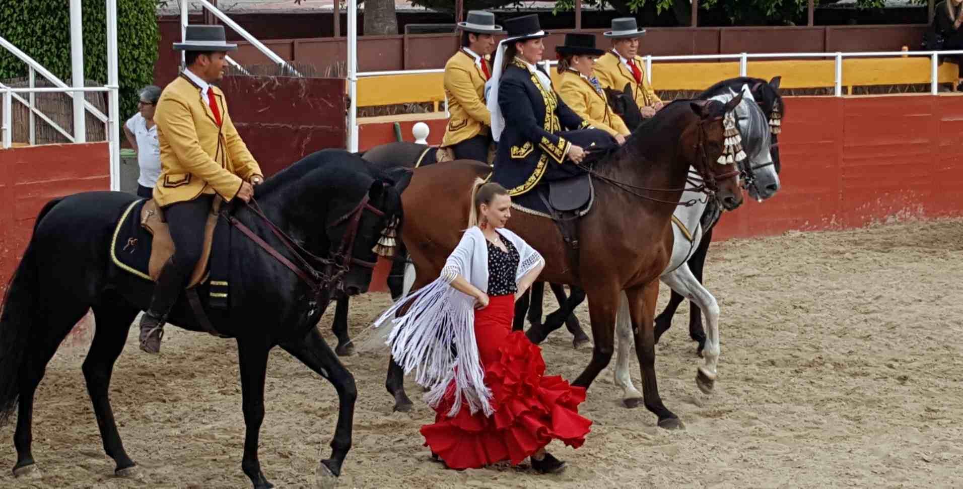 Andalusine – Flamenco-compressed